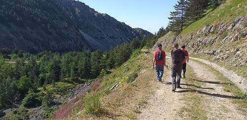 sentiero portella della vendere monte cammarata (8).jpg
