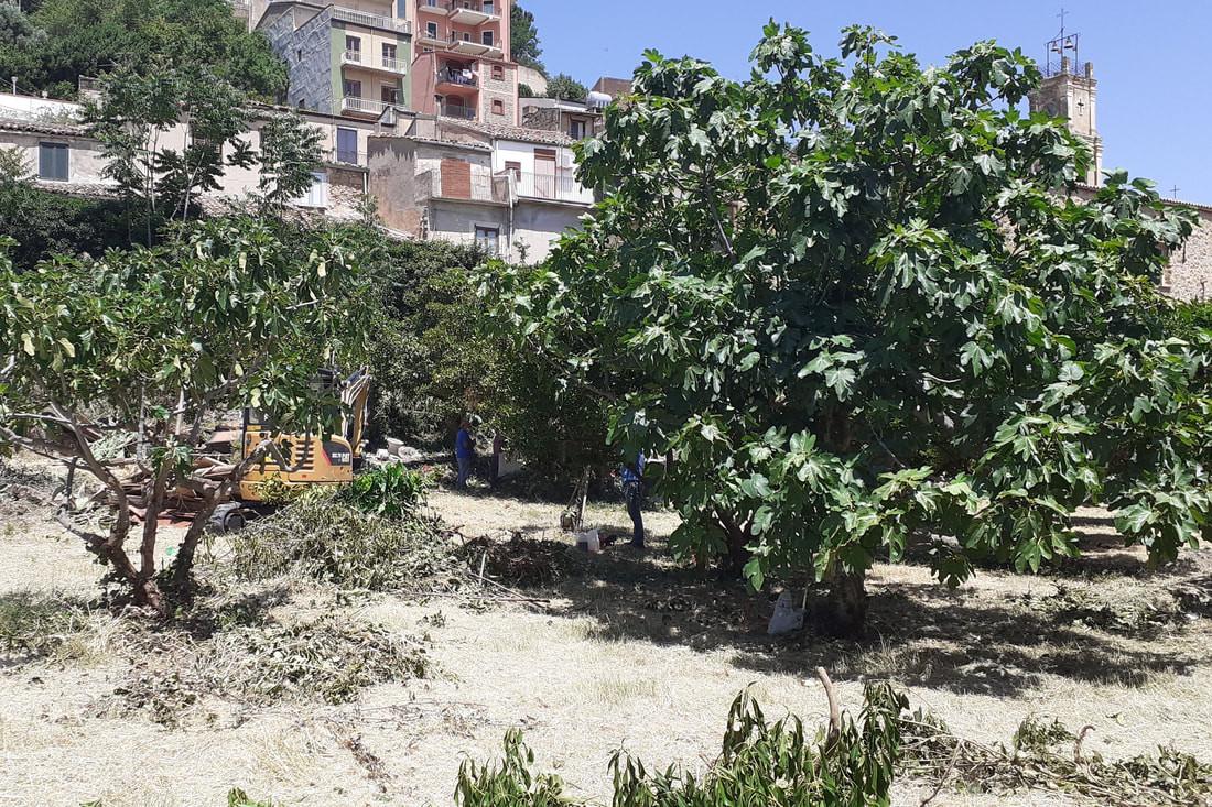 progetto giardino ritrovato cammarata (1