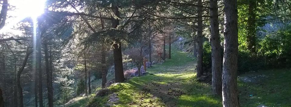 sentieri monte cammarata (1).jpg