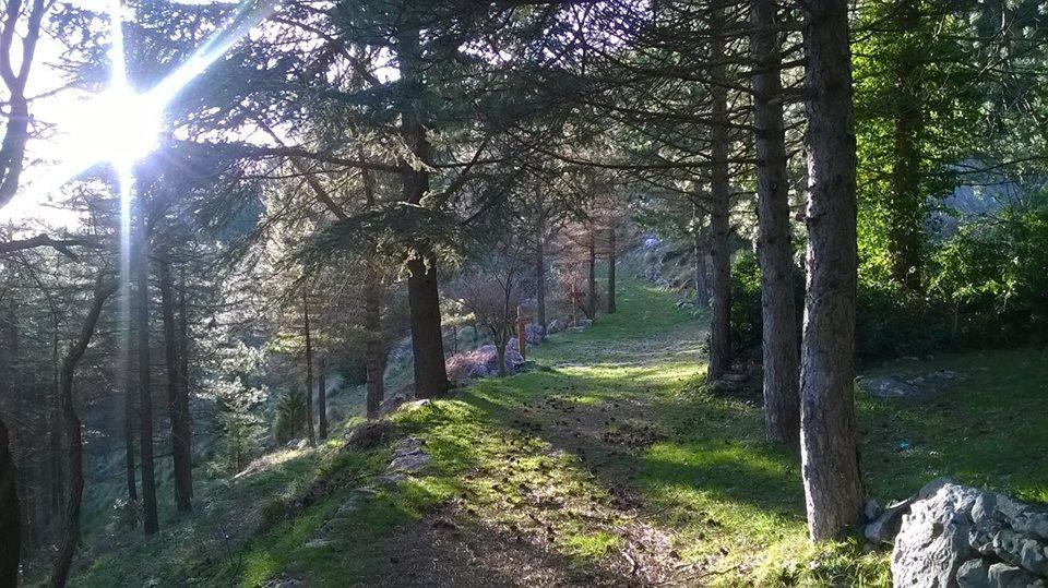sentiero monte cammarata