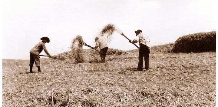 foto antica di cammarata (4).jpg