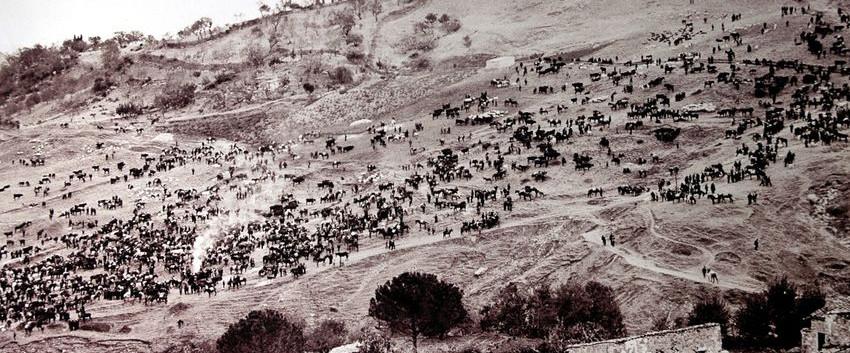 Cammarata Fiera bestiame Ant.fo.850x509.