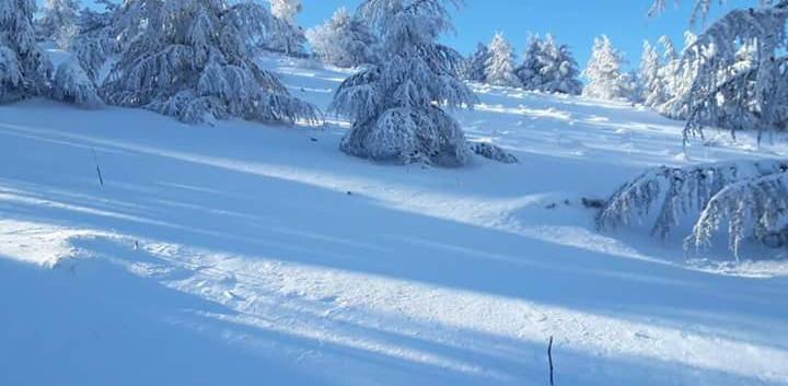 neve monte cammarata (4).jpg