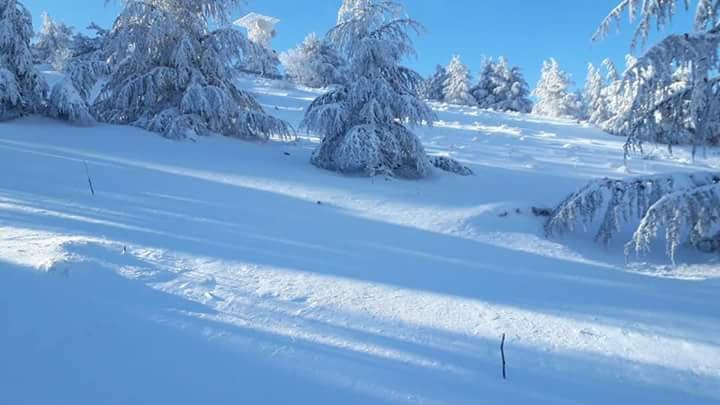 neve monte cammarata