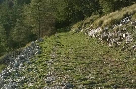 sentieri monte cammarata (4).jpg