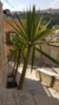 scala del castello.jpg