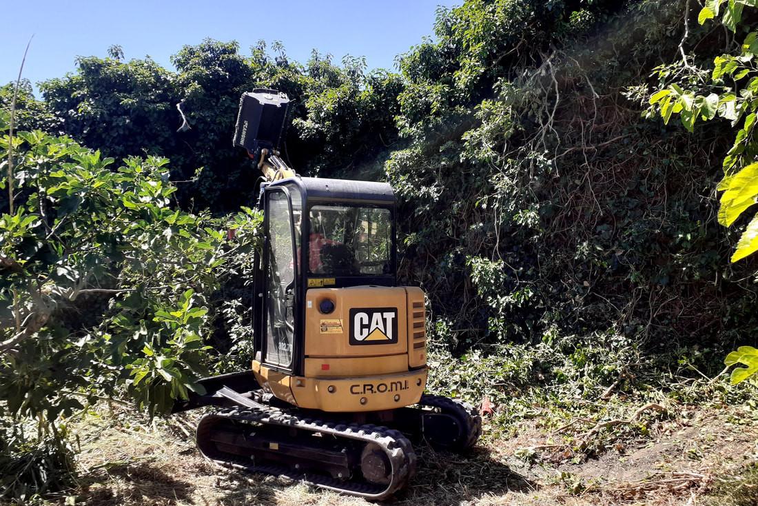 progetto giardino ritrovato cammarata (7