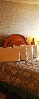 Bed_160x400_2020-06-02.jpg