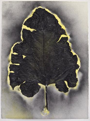 Leaf series 2, 2014