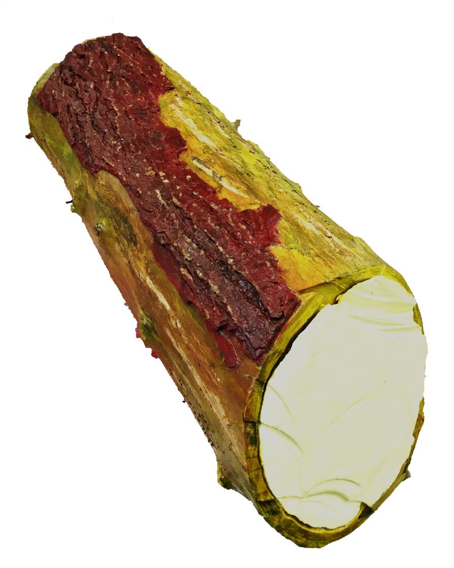 TFN specimen Core sample (light yellow) 2019