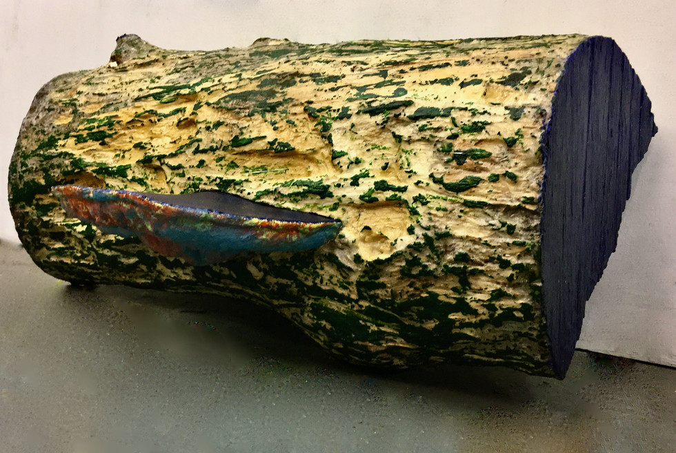 TFN- specimen split log (parasite) 2019