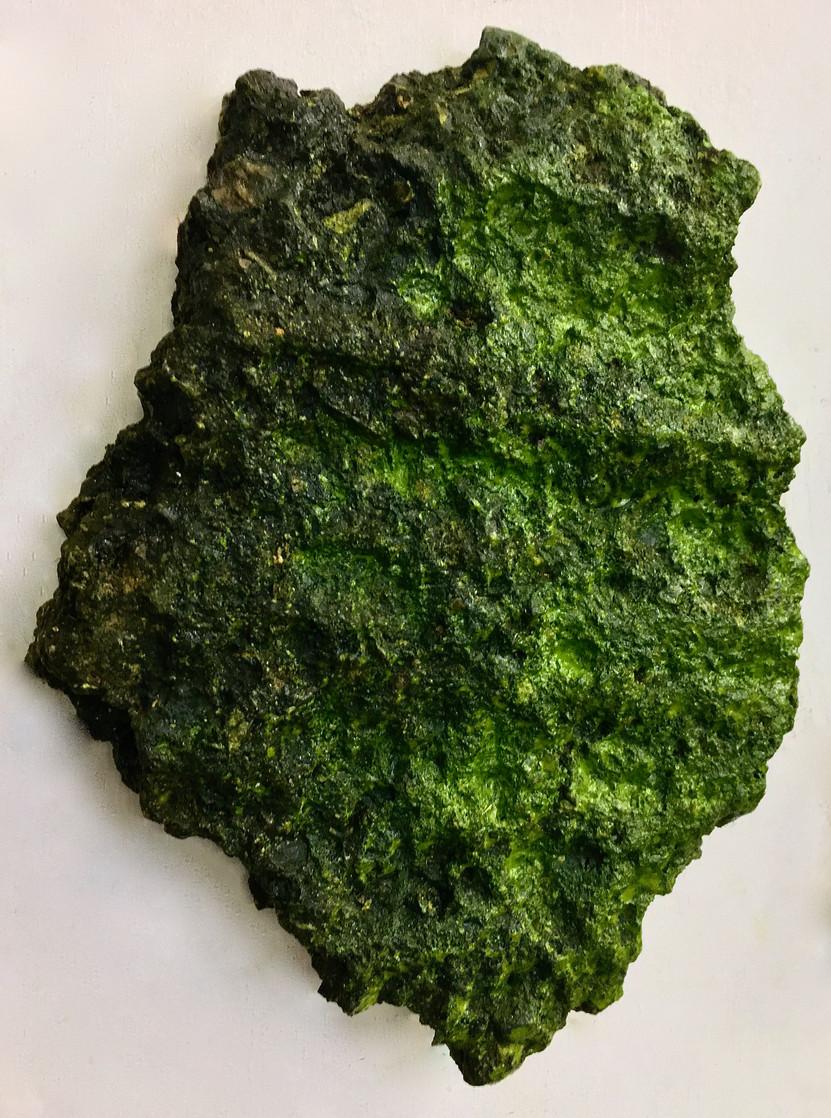 TFN specimen rock tar 2020