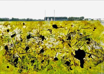 Plastic Nature View 2014