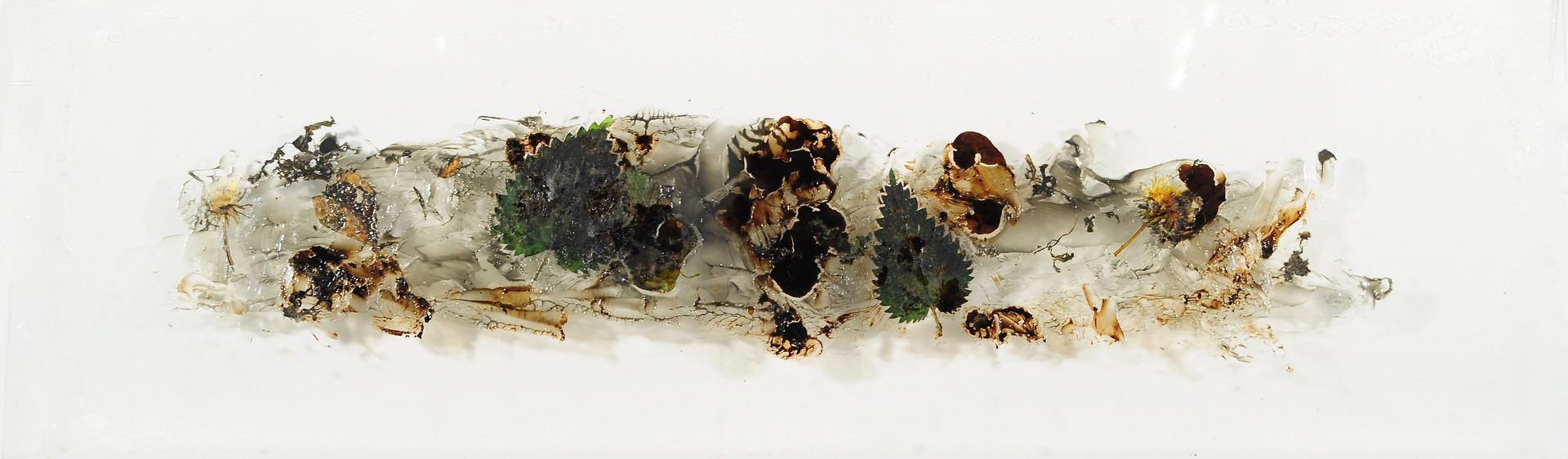 Greasescape (micro) 11, 2011