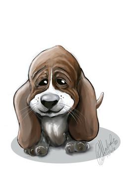 Puppy_1 2
