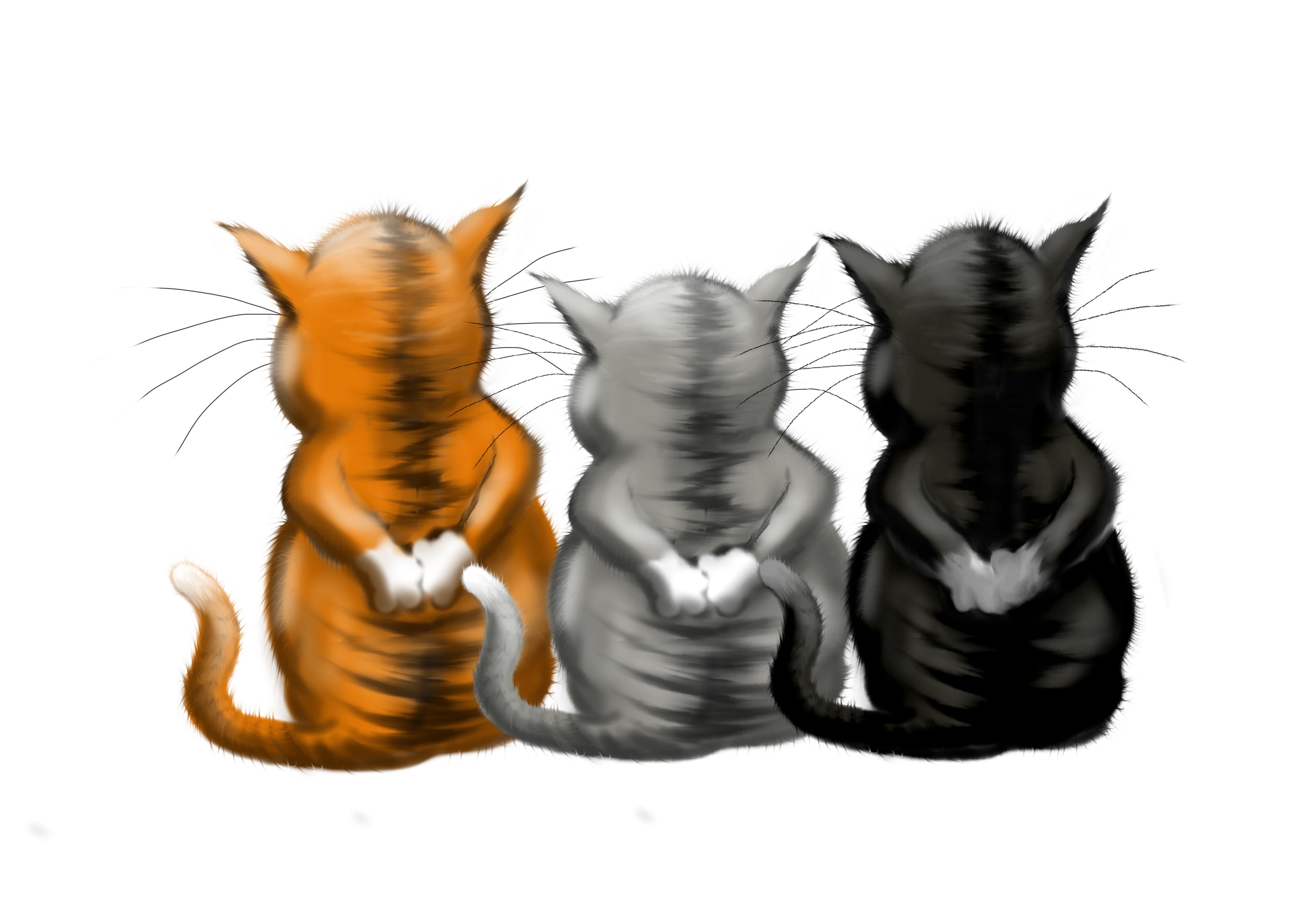 Copy_Cats_