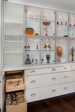 Seattle Penthouse Display Case