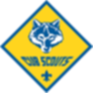 BSA Logo_Color_Clear_small.png