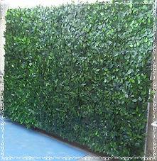 Muro Ingles 2.jpg