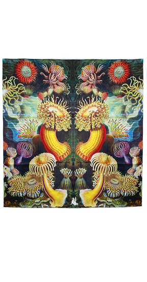 Anemones carré scarf