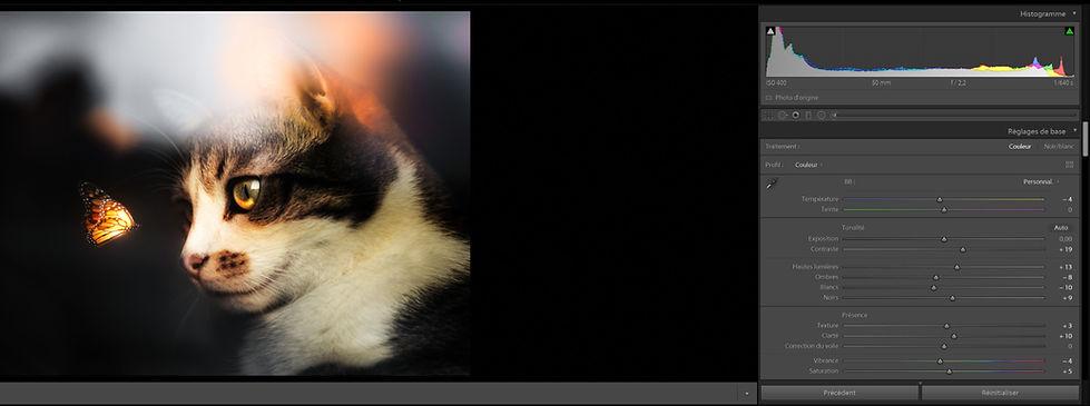 formation%20lightroom_edited.jpg
