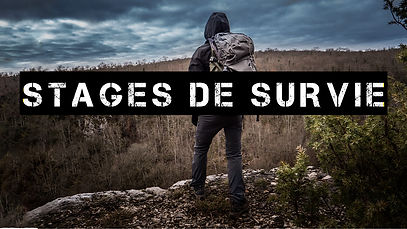 stages survies.jpg