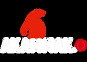 Logo BF.png