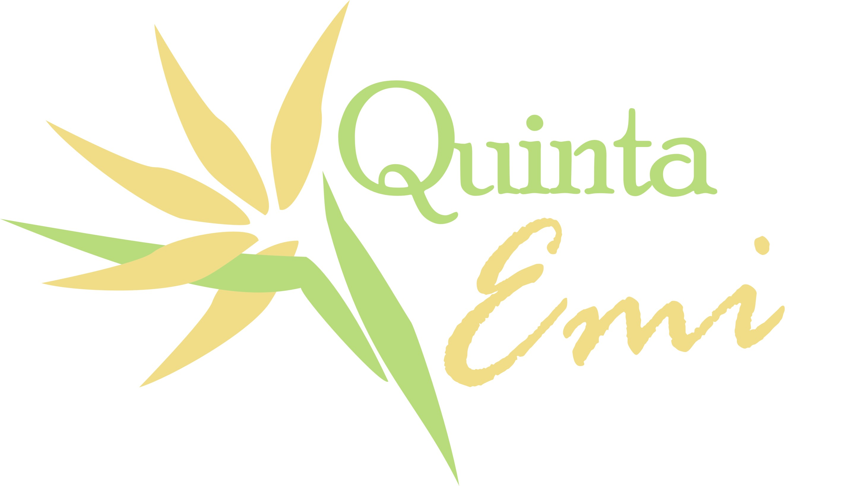 Logo Quinta Emi 2 tintas
