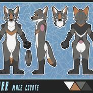 coyote_base.jpg