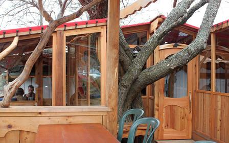 Tree-House-Salt-Spring.jpg