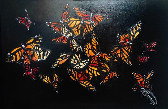 Butterfly my soul