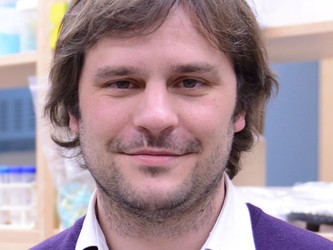 Dr. Jamie Kramer