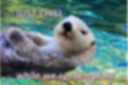 Screenshot 2020-01-08 15.13.24.png