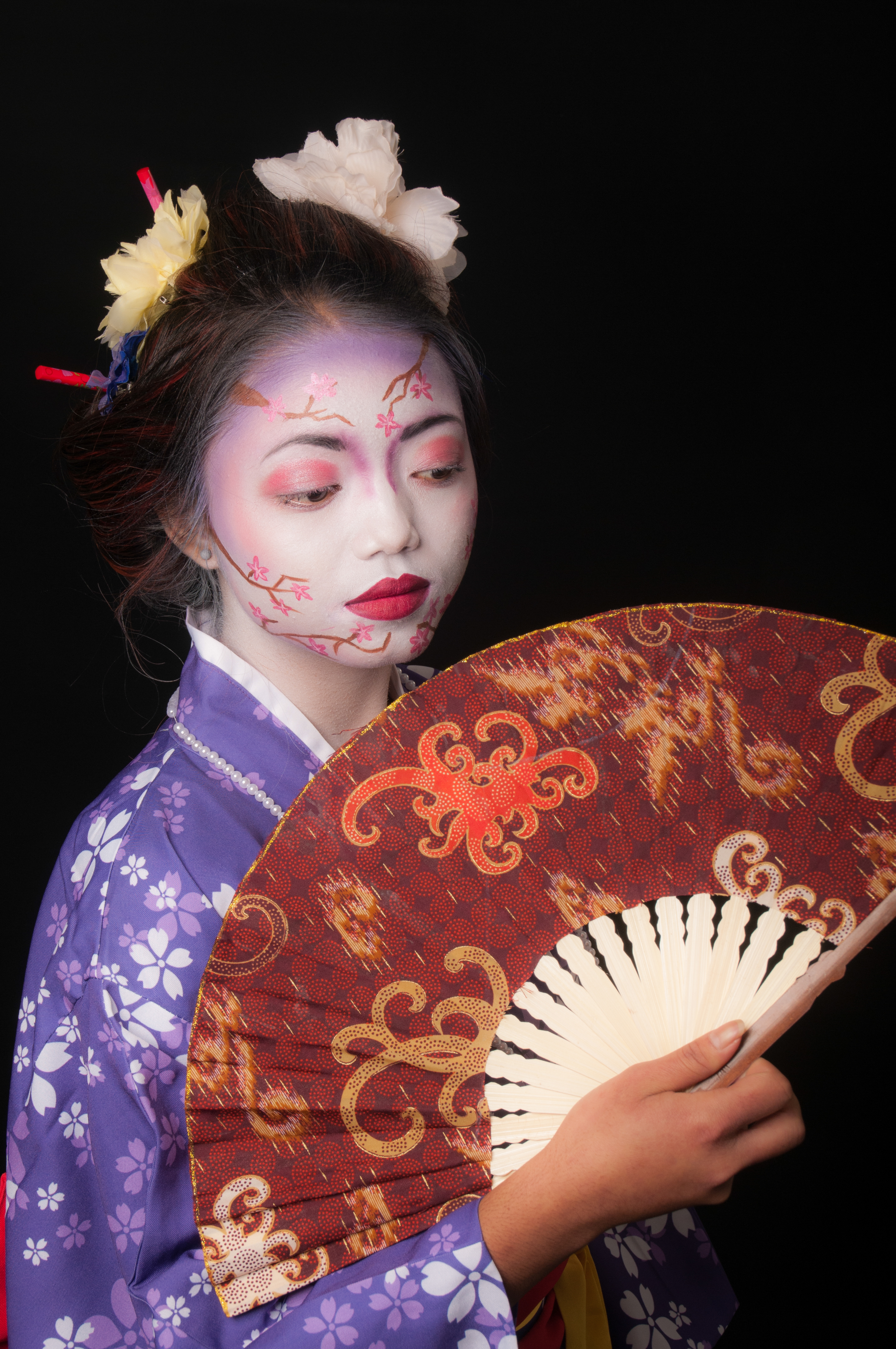 Creative Geisha 2016