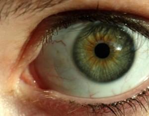 Tips & Tricks voor het opmaken van groene ogen