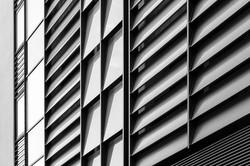 Grey Matters_Ingo-0003