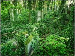 Jüdischer_Friedhof_Fürth_TM_3