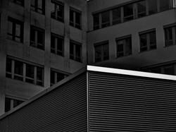 grey_Gerhard (2)
