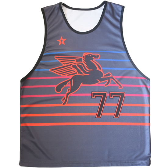 PreOrder: The Pegasus Jersey (Night Edition)