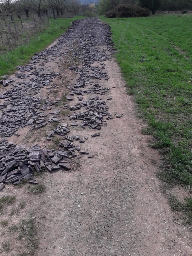 Mein Mountainbike Home Trail nahe Baiersdorf