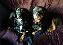 Bella & Athena