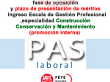 Aprobados/as definitivo fase de oposición y plazo de presentación de méritos, Construcción, Conserva