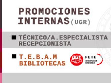 PROMOCIONES INTERNAS TEBAM y T.E.RECEPCIONISTA