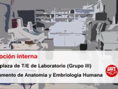 Promoción interna  de una plaza de T/E de Laboratorio (Grupo III)  Departamento de Anatomía y Embrio