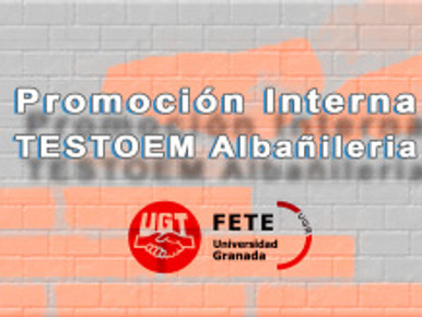 Promoción Interna. TESTOEM – Albañileria