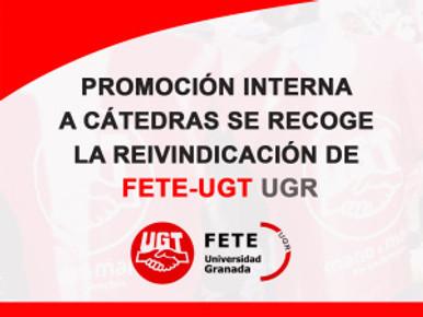 PROMOCIÓN INTERNA A CÁTEDRAS SE RECOGE LA REIVINDICACIÓN DE FETE-UGT UGR