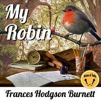 My Robin 7.jpg