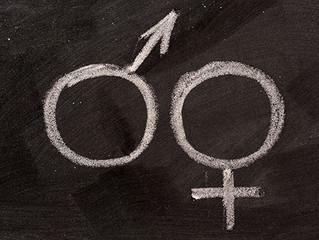 Lei proíbe educação de gênero nas escolas do município de Manaus/AM