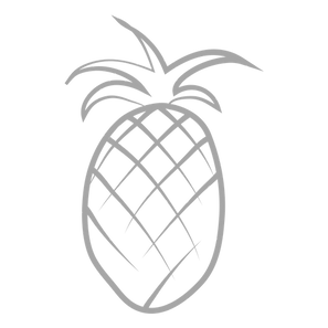pineapple grey.png