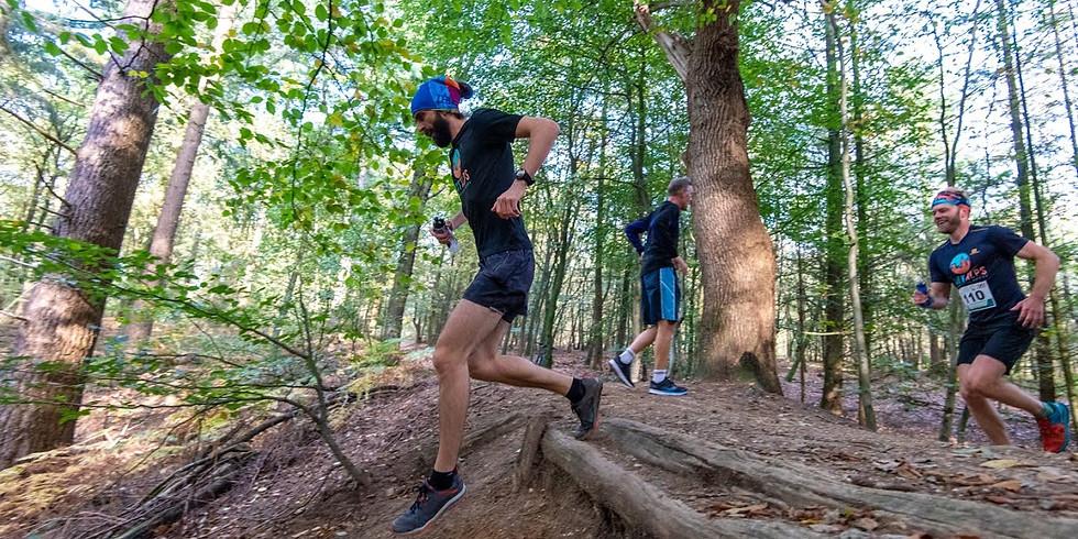 City Alps Trail Running workshop weekend